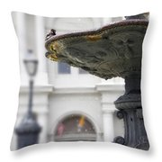 Bird In A Fountain Throw Pillow