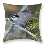 Bird In Action Throw Pillow