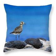 Bird In Blue Throw Pillow