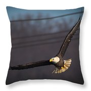 Bird In Flight  Throw Pillow by Cindy Lark Hartman