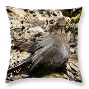 Bird In Hiding Throw Pillow