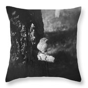 Bird In View Throw Pillow
