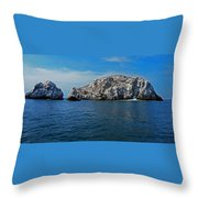 Bird Island 1 Throw Pillow