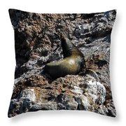 Bird Island 6 Throw Pillow