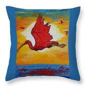 Bird Of Beauty, Loves Light In Flight Throw Pillow