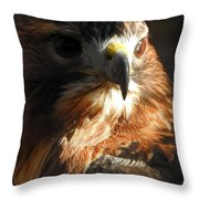 Bird Of Mystery Throw Pillow