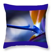 Bird Of Paradise 1 Throw Pillow