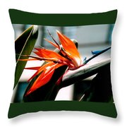 Bird Of Paradise 2 Throw Pillow