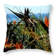 Bird Of Paradise By The Sea Throw Pillow