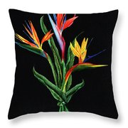 Bird Of Paradise In Black Throw Pillow