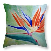 Bird Of Paradise, Noon Throw Pillow