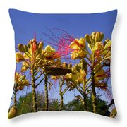 Bird Of Paradise Shrub Throw Pillow