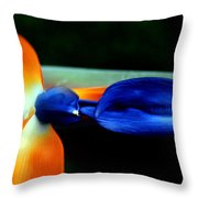Bird Of Paradise Study 1 Throw Pillow