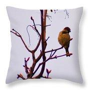 Bird On A Bud Throw Pillow