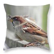 Bird On A Fence Throw Pillow