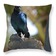 Bird On An Anchor Throw Pillow