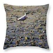 Bird On Beach Throw Pillow