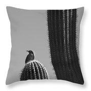 Bird On Cactus Throw Pillow by Richard J Thompson