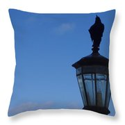 Bird On Lamplight Throw Pillow