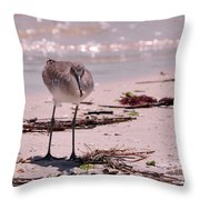Bird On The Beach Throw Pillow