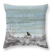 Bird On The Shore Throw Pillow