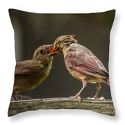 Bird Parenting Throw Pillow