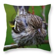 Bird Perch Throw Pillow