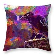 Bird Rain Rest Animals  Throw Pillow