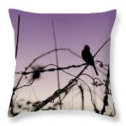Bird Sings Throw Pillow