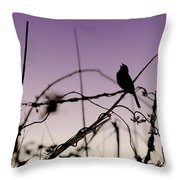 Bird Sings Throw Pillow