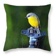 Bird Siting On A Water Sprinkler Throw Pillow