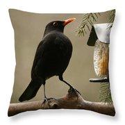 Bird Table Throw Pillow