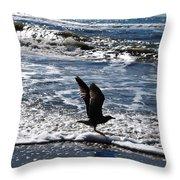 Bird Taking Flight On The Shore Throw Pillow