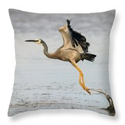 Bird Taking Off Throw Pillow