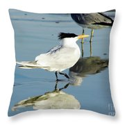 Bird - Tern - Reflection Throw Pillow