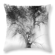 Bird Tree Land Bw Fine Art Print Throw Pillow