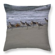 Bird Walk Throw Pillow