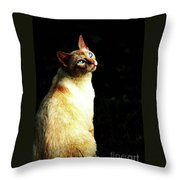 Bird Watcher Throw Pillow