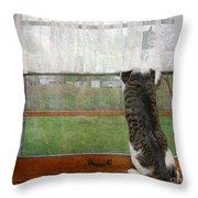 Bird Watching Kitty Cat Throw Pillow