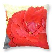 Bird Watching Red Rose Throw Pillow