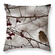 Bird With Berry Throw Pillow