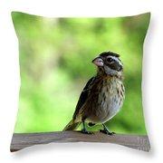Bird With Punk Attitude Throw Pillow