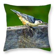 Bird With The Seed Throw Pillow
