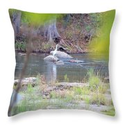 Bird015 Throw Pillow