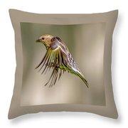 Bird2 Throw Pillow