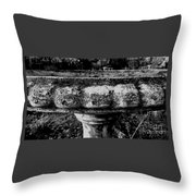 Birdbath In Black And White  Throw Pillow