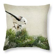 Birdie Stilllife Throw Pillow