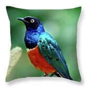 Birds 108 Throw Pillow