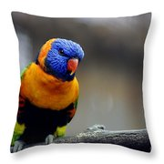 Birds 27 Throw Pillow