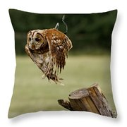Birds 47 Throw Pillow
